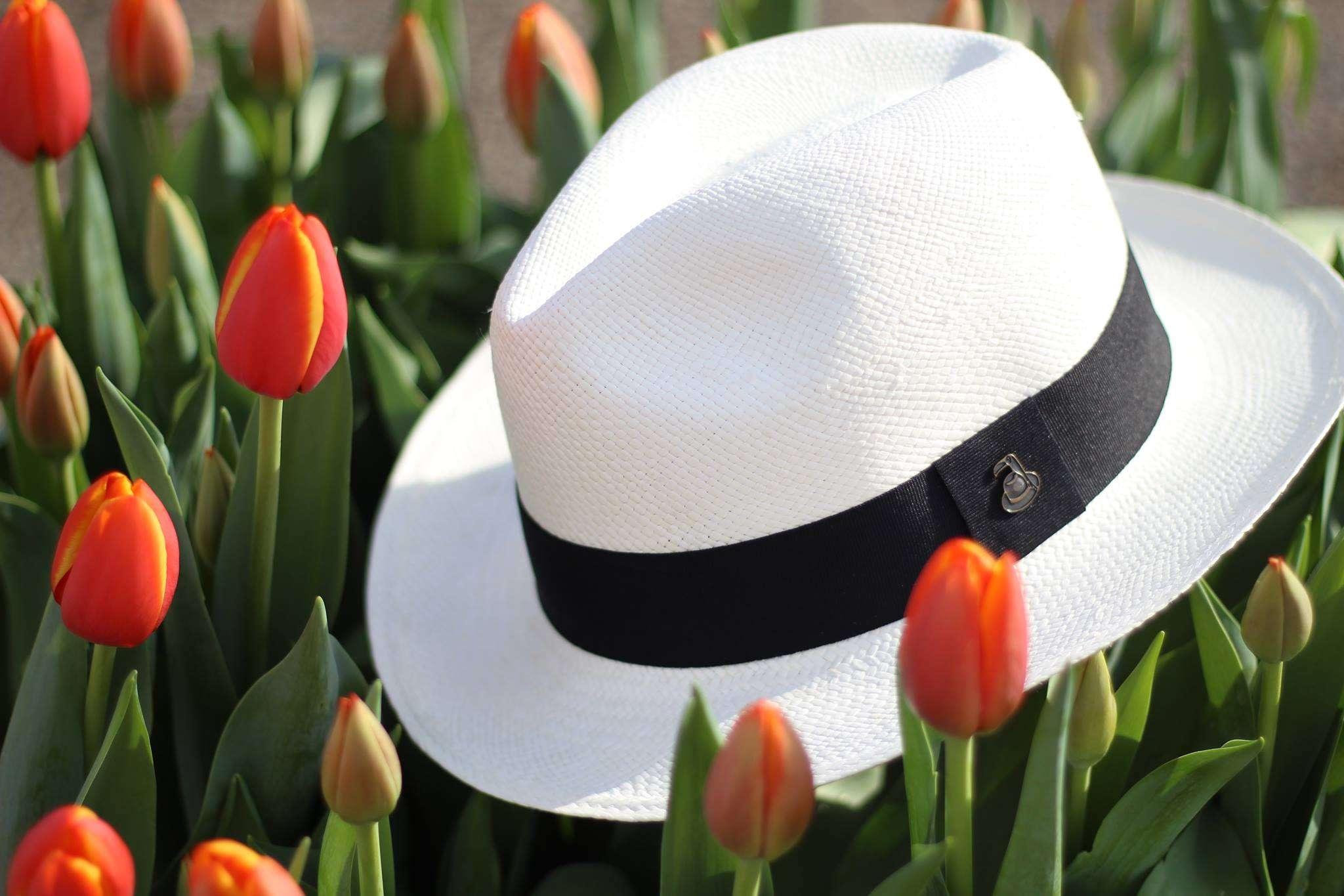 Spring Panama Hat